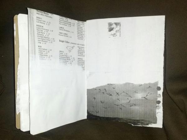 sketch2-resize
